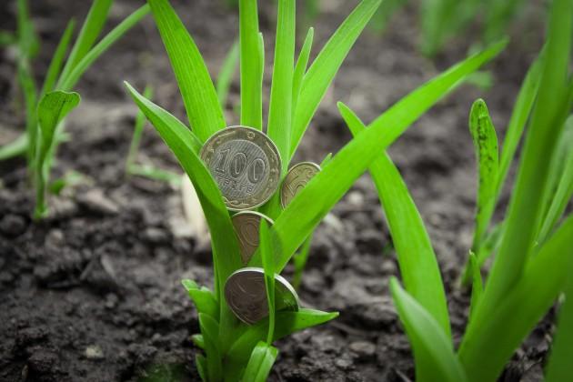 Всплеск бизнес-активности зафиксирован всельском хозяйстве