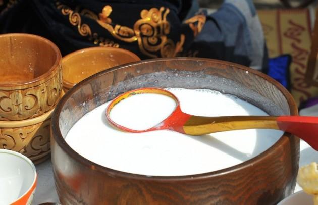 Казахстан начал экспортировать верблюжье икобылье молоко