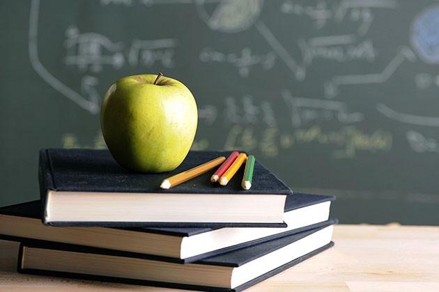 Что прибыльнее: детский сад или школа?