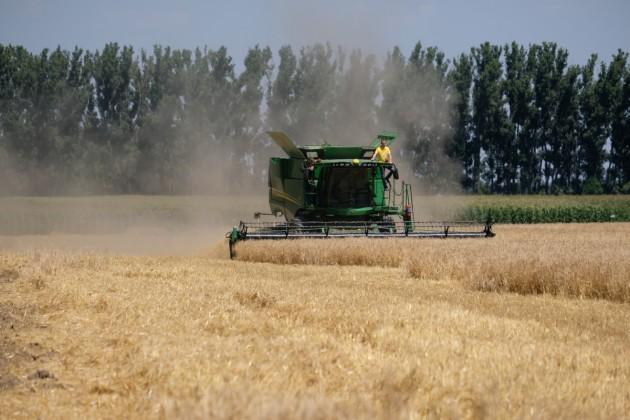 Экспортный потенциал по зерну в Казахстане снижен до 6-7 млн тонн