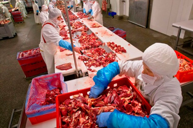 Программа экспорта мяса из РК требует полного пересмотра