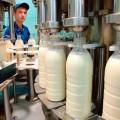 В Карагандинской области построят завод по переработке молока