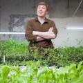 Бизнес спряным вкусом: как создать городскую ферму?