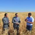 ВЮжно-Казахстанской области началась уборка урожая