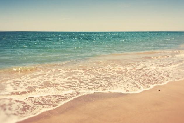 Кто скупил северное побережье Капшагая?