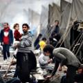 20 штатов США отказались принимать сирийских беженцев