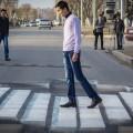 Первая объемная зебра в 3D появилась в Павлодаре