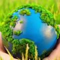 Единственная вмире «зеленая» биржа сообщила орекордных вложениях