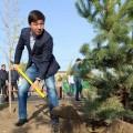 Более 300 тысяч алматинцев приняли участие в городском субботнике