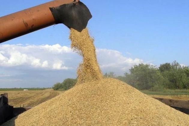 УКазахстана есть потенциал наращивать экспорт зерна