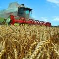 Президент недоволен темпами развития аграрного сектора