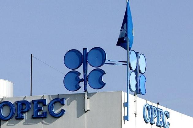 ОПЕК ожидает роста спроса на нефть в 2020 году