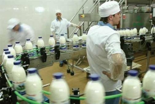 Переработчиков молока подозревают в ценовом сговоре