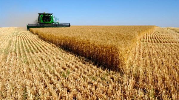 В Союзе фермеров озвучили замечания по АПК