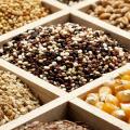 Сверхдоходный бизнес на семенах