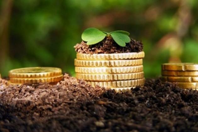 Аграрии в полтора раза увеличили прибыль