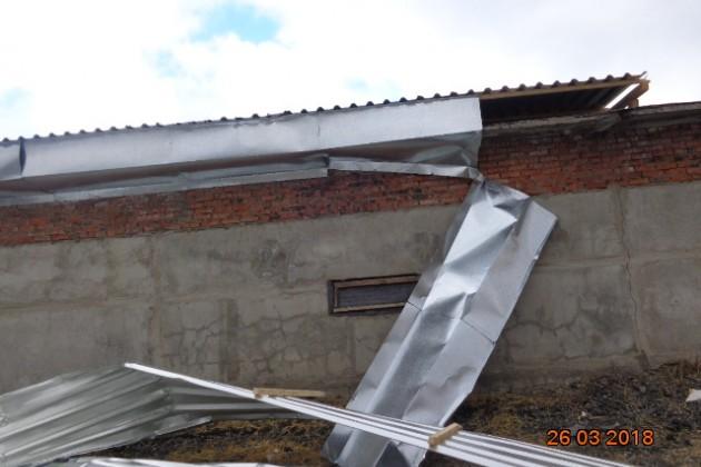 Ураган вУсть-Каменогорске: СК «Евразия» выплатила 12,8млн тенге