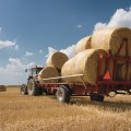 АПК Казахстана в 2018 году: экспортный прорыв и новые проекты