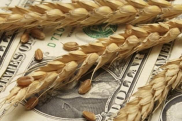 Казахстан ждет снижения урожая на 3-4 млн тонн