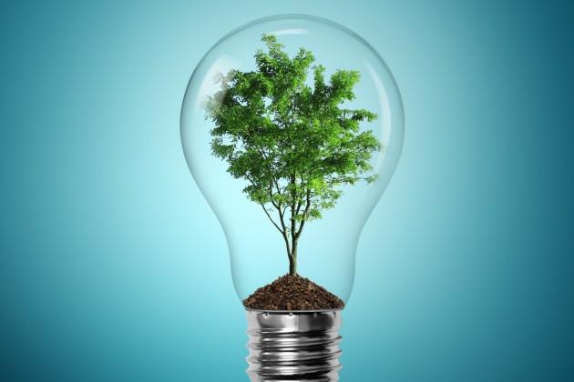 Новый закон о зеленой экономике обяжет разделять бытовой мусор
