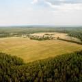 Выявлено более 2 млн гектаров неиспользуемых земель