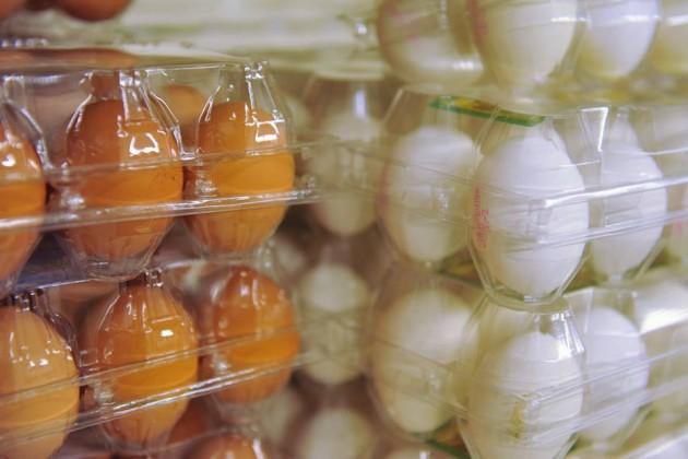 В Казахстане могут появиться яйца XXL