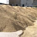 Пшеница дешевеет на бирже ЕТС