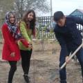 В Актобе посадили яблоневый сад