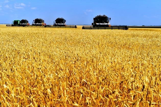 Арман Евниев: Проблемы схранением нового урожая небудет