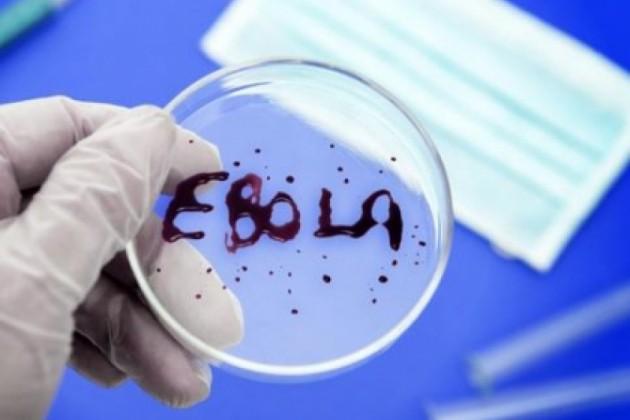 Почти 18,5 тысяч человек в мире заразились Эболой