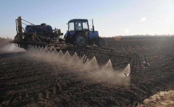 Сельхозкультуры будут размещены на площади 21,3 га