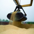 Аграрии получат субсидии почти на 5 млрд тенге
