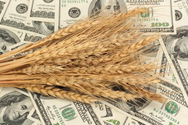 ЕТС обеспечит лучшую цену на зерно