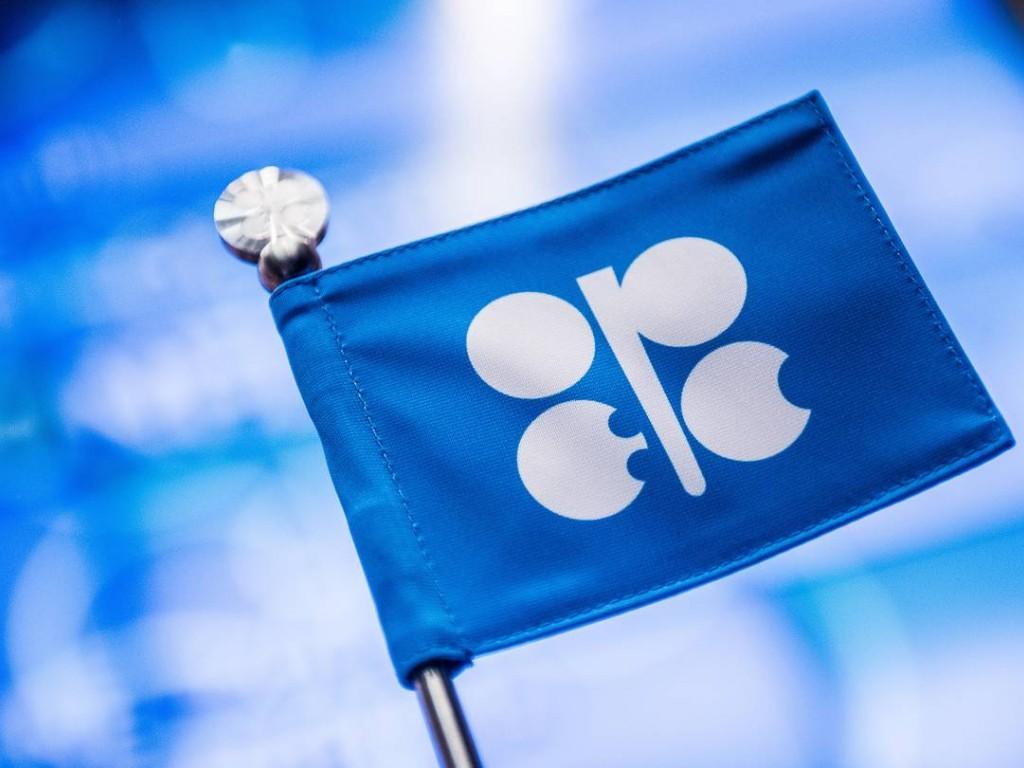 МЭА: ОПЕК вначале года выполнила соглашение осокращении нефтедобычи на90%