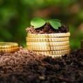 Оплату НДС аграриям-заготовителям будут возвращать