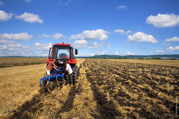 Казахстанским фермерам возмещается 80% затрат на обводнение пастбищ