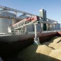 Экспорт зерна составит 12 млн. тонн
