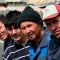 Нелегалы в Алматинской области пополнили бюджет на 92 млн тенге