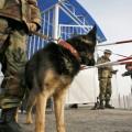 Таджикские пограничники обстреляли погранпост КР