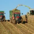 Господдержка сельского хозяйства достигла рекордного уровня