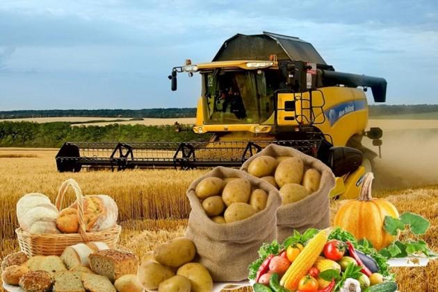 Экспорт сельхозпродукции необходимо увеличить в2,5раза