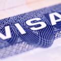 На период ЭКСПО могут ввести облегченный визовый режим