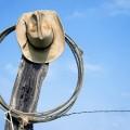 Появятсяли вКазахстане свои «ковбои»