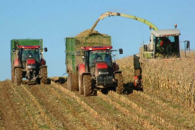 Аграрии пока слабо реагируют наидею диверсификации посевов