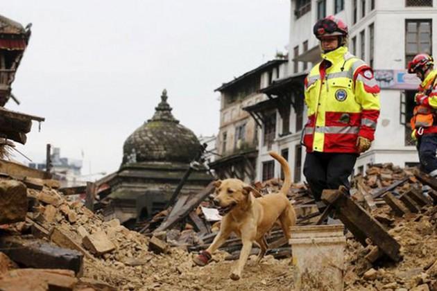 В Непале количество погибших превысило 5,5 тыс. человек