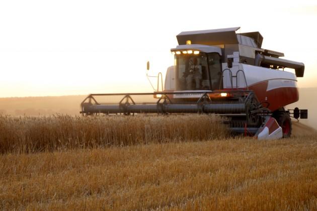 В РК создается Единый зерновой холдинг