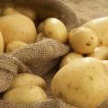 Удешевленный картофель вАлматы будут привозить изПавлодарской области