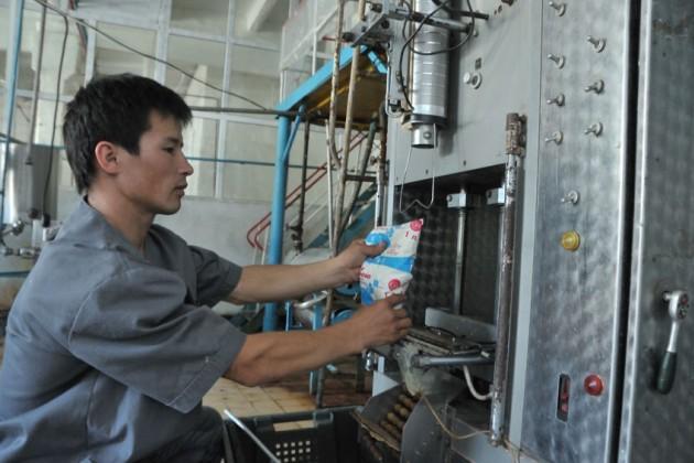 Беларусь готова помочь РК в производстве молока