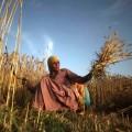 Индия не хочет подписывать договор ВТО