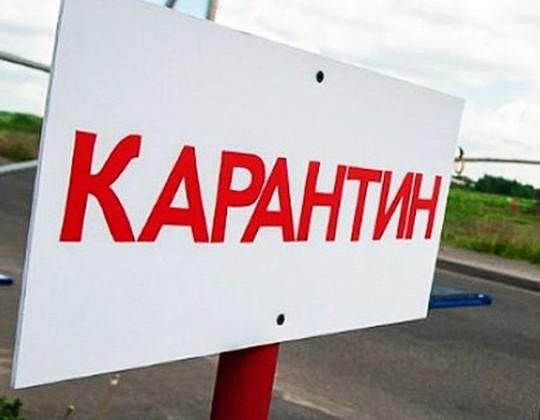 Карантин по сибирской язве в Акмолинской области снят